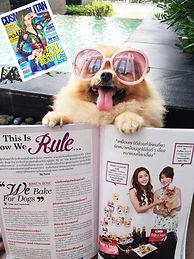 Dog treats, Dog bakery, ขนมสุนัข, อาหารสุนัข, ของขวัญสุนัข, ขนมหมา, Pet gift, pet food, dog snack,Dog treats, Dog bakery, ขนมสุนัข, อาหารสุนัข, ของขวัญสุนัข, ขนมหมา, Pet gift, pet food, dog snack,Dog treats, Dog bakery, ขนมสุนัข, อาหารสุนัข, ของขวัญสุนัข