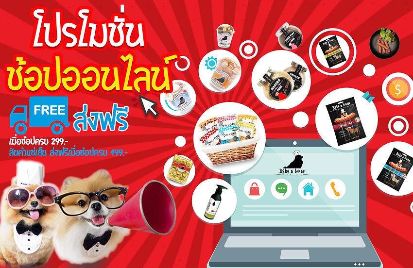 promo shop online sale.jpg