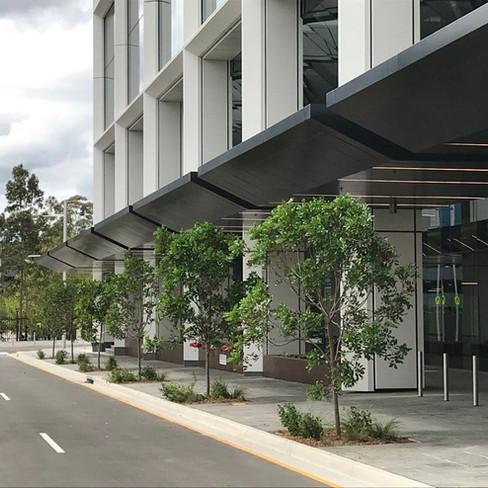 Macquarie Park Building C