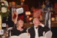 Presidential Gala ( Ball-Gala 2017 Bidde