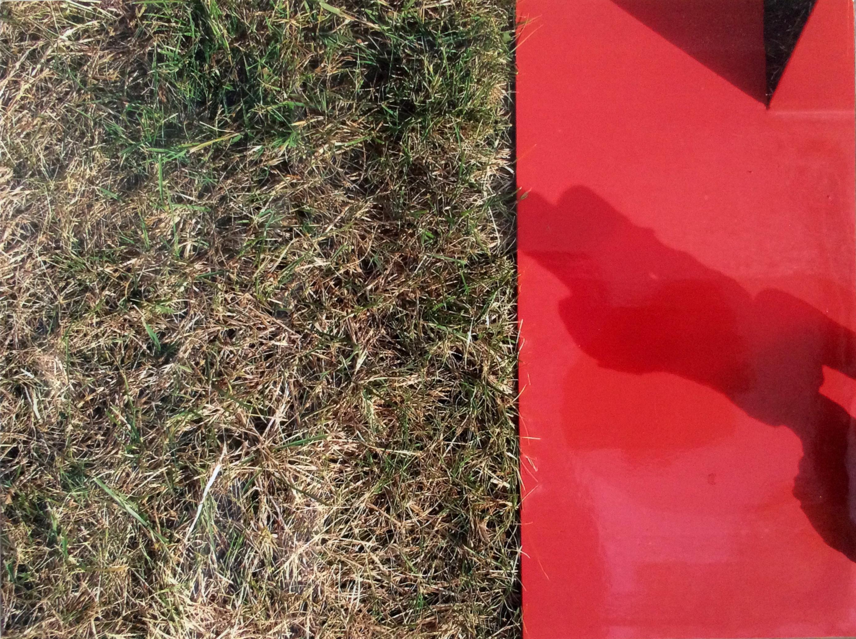 """""""Sur l'herbe du pré""""  Photo-objet"""