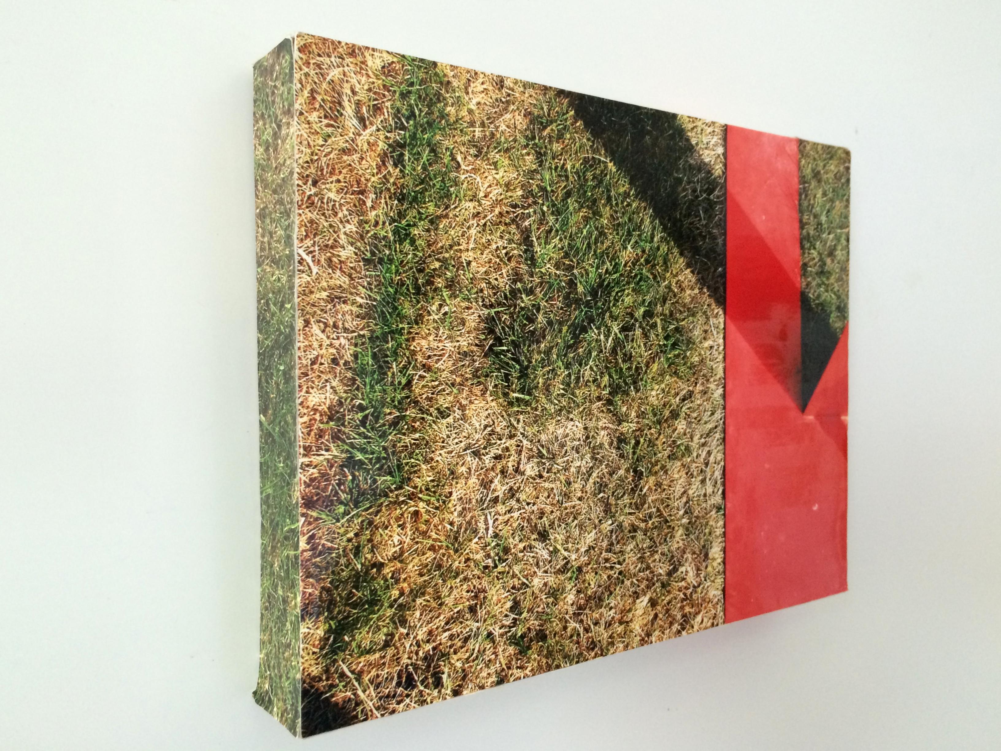 """"""" Sur l'herbe du pré"""" Photo-objet"""