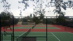 Webb.Tennis2