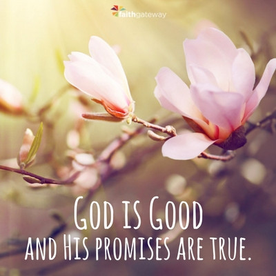 God is Good and His Promises are true