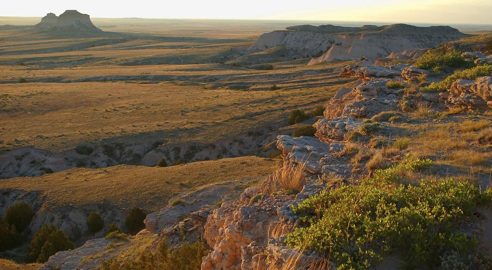 Golden light on the sagebrush desert of Wyoming.