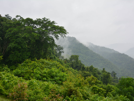 Hiking Doi Chiang Dao in Northern Thailand