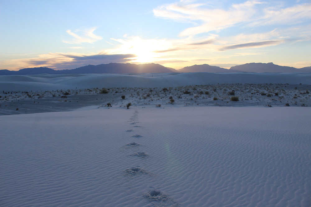 White Sands National Park at sunset.