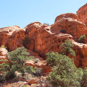The Ultimate Capitol Reef National Park Adventure Guide