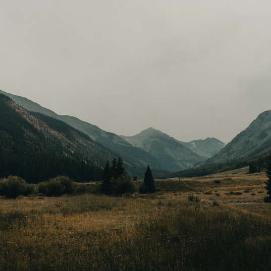 Ghost towns. PC Chad Madden on Unsplash.