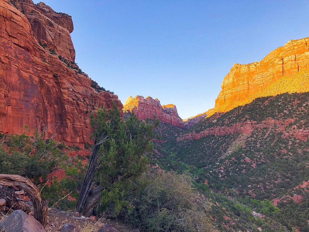 Red rock canyon in the desert during sunset.