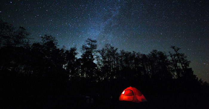 Glowing red tent in front of starry sky and forest