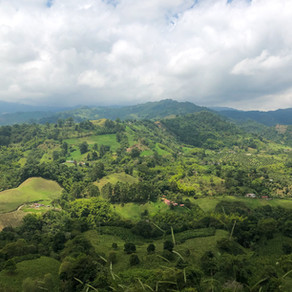 The Ultimate Guide to Armenia, Colombia