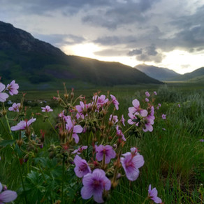 8 Things We Learned After Living in Crested Butte for 8 Months