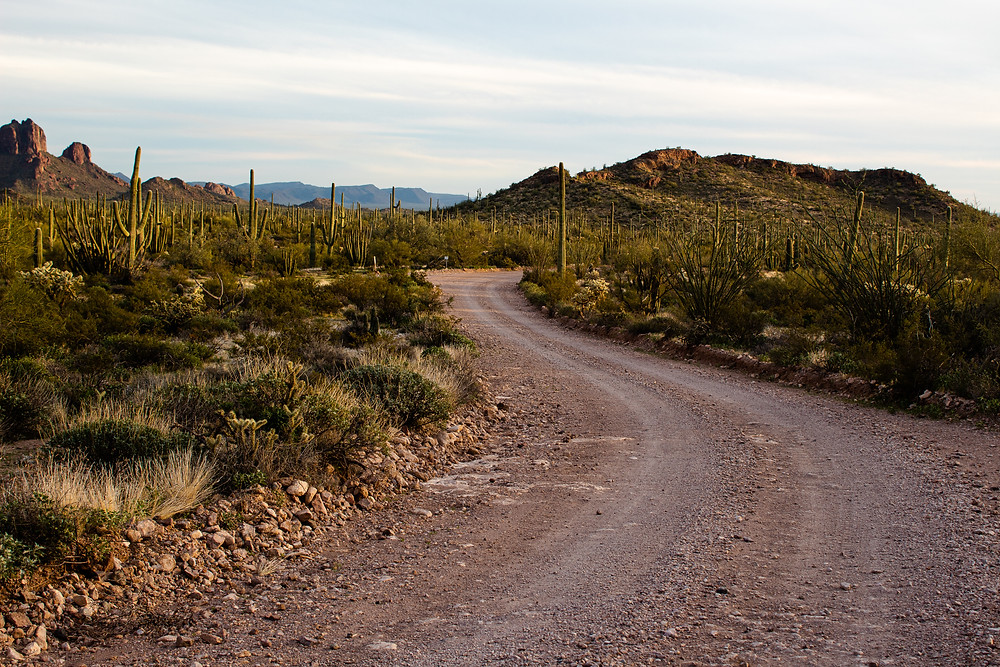 Dirt road through desert in Arizona.