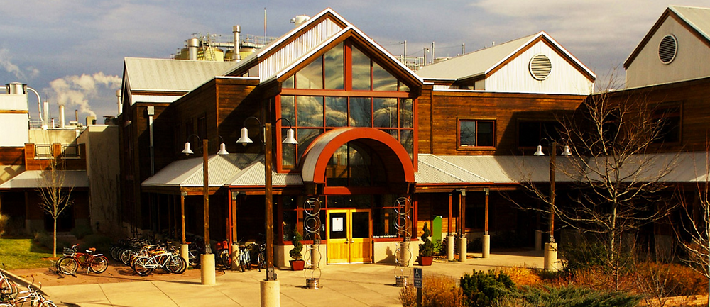 Modern wooden brewery building