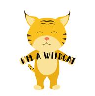Cute baby wild cat