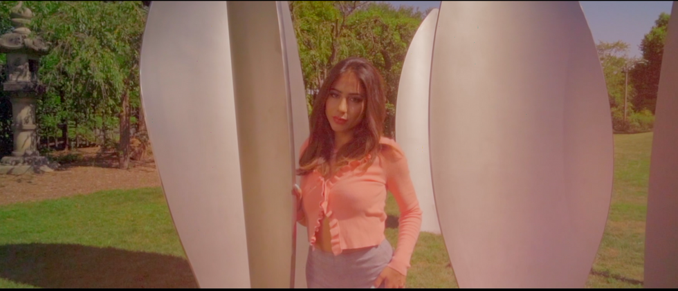 Video Portrait for Niusha