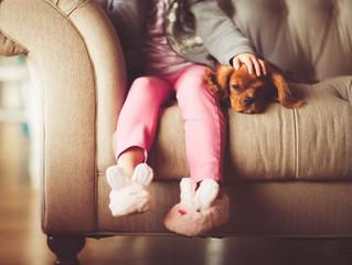 Дети любят домашних животных больше, чем своих братьев и сестер
