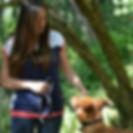 education canine loiret, education canine pithiviers, education canine fleury les aubrais, ormes, ingré, donnery, mardié, cercottes, gidy, neuville aux bois, chilleurs aux bois, saran, olivet, vennecy, trainou