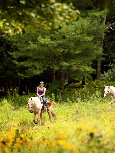 Villa-Roma-Horseback-Riding-2-daf1ee1950