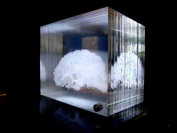 アクリル製3Dモデル
