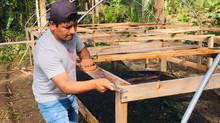DYA Perú apoya a productores cafetaleros de la selva central de Perú