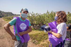 Arándanos: DYA y ABC pilotean un sistema para prevenir el trabajo infantil en cadenas productivas