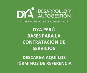 DYA Perú: bases para la contratación de servicios