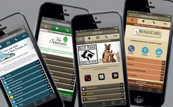 mobile websites mobile web design