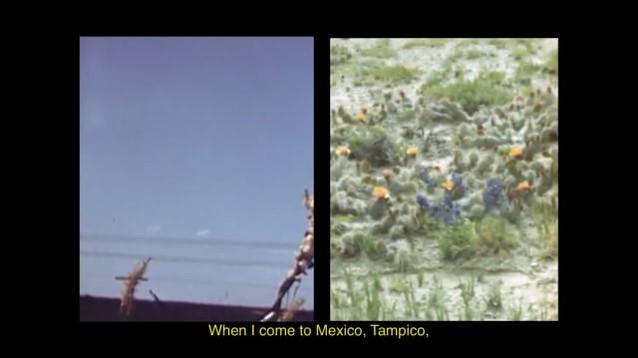 "Gabrielle Garcia Steib, sound design by Udit Duseja, ""Landscape Fever / Fiebre del Paisaje,"" 2020. Super 8 archival footage, 3 min 18 sec."
