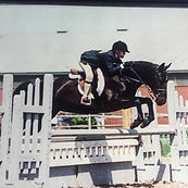Trillium large pony Lenka equestrian centre campbellville horseback riding lessons
