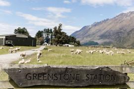 2019-12-7-Greenstone-Station-Cookshop-8.