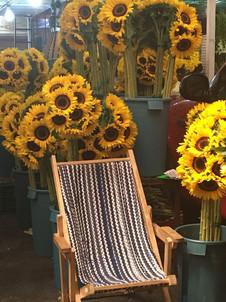 Aura Cocina Mexicana | Market Tour | Mercado de Jamaica | Flowers