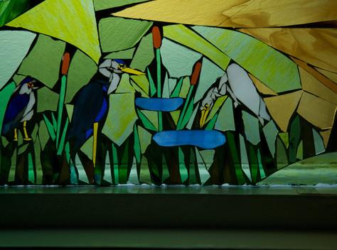 Closeup, herons & egret