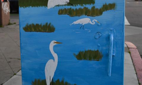 Egrets & Marshland