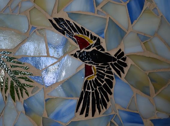Red-winged blackbird detail