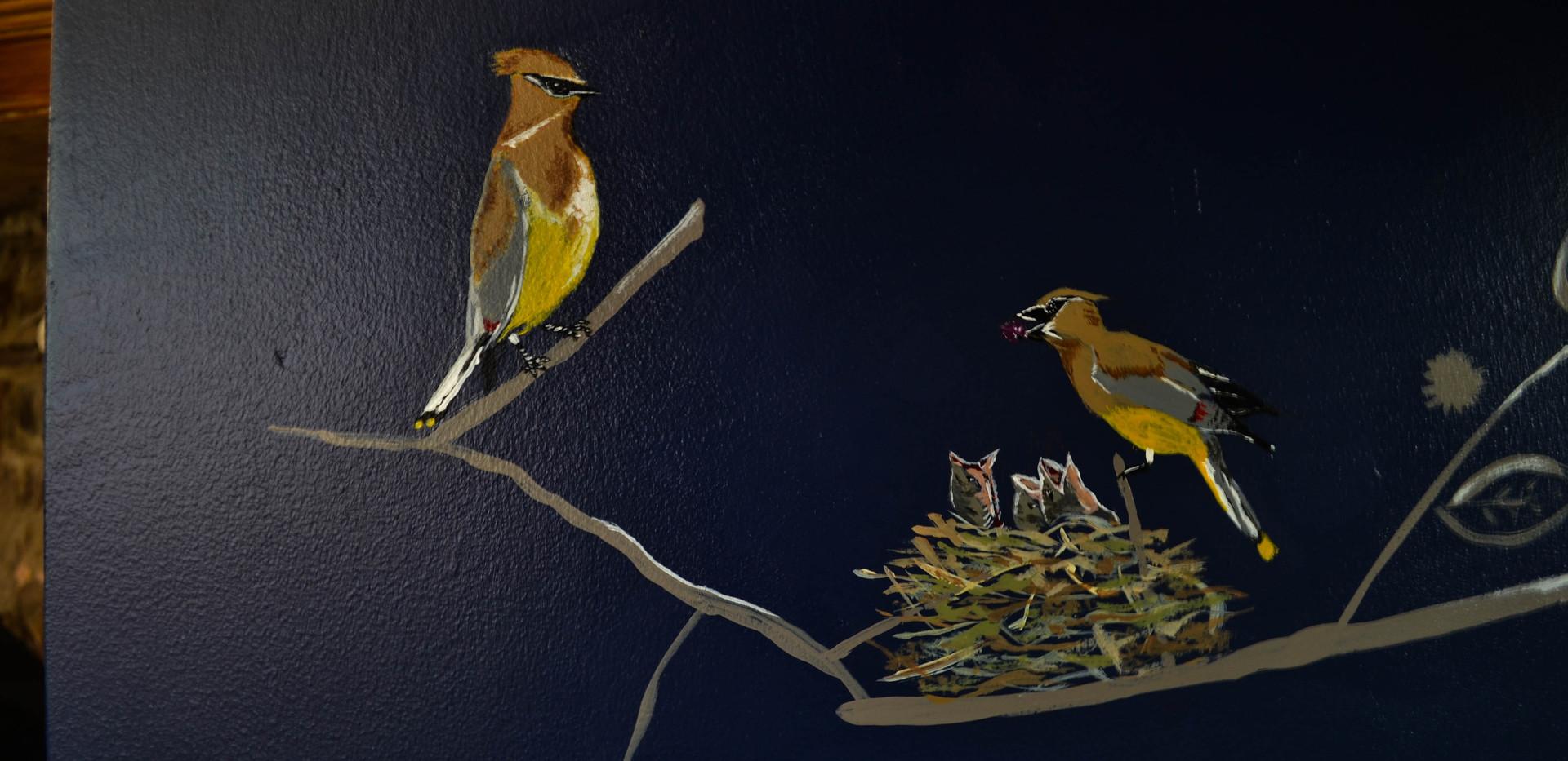 Cedar waxwing family