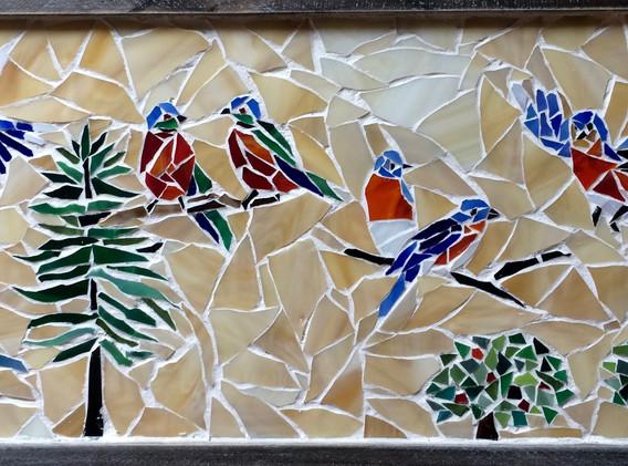Birds of the Sierras