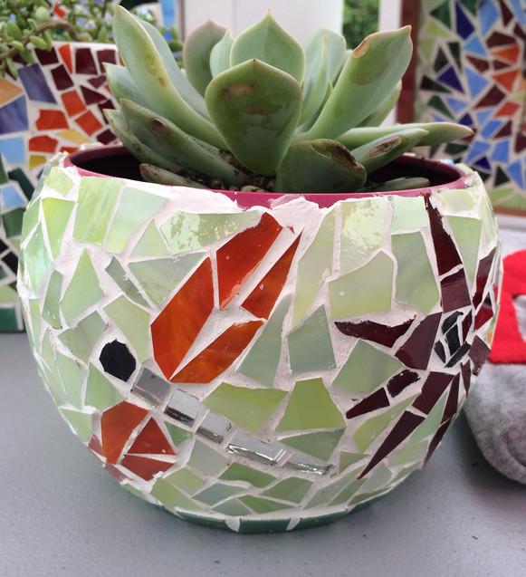 dragonly planter