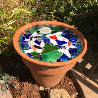 Koi & water lilies