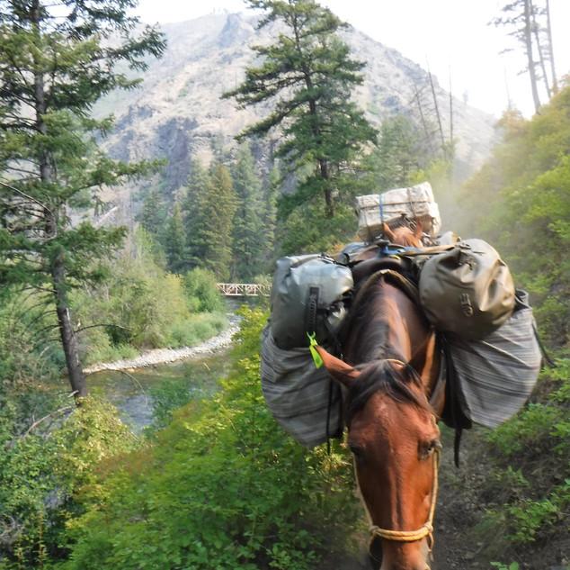 Horse Pack trip