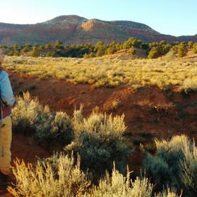 Liz guiding an evening hike...