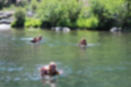 Swimming in MF.jpg