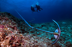 Anchor and divers