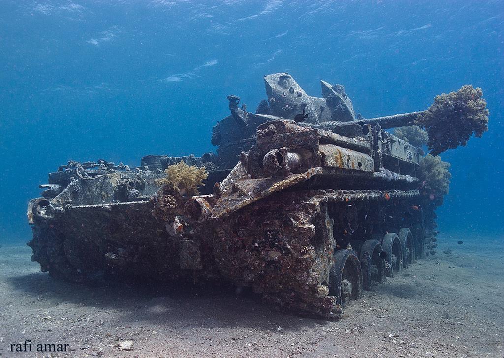 Tank In Jordan