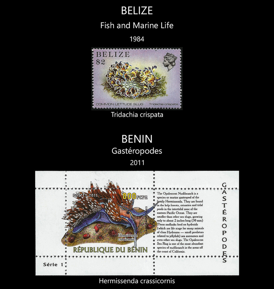 Belize  -  Benin Stamps & FDC