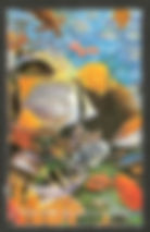 APSNY  REPUBLIC OF ABKHAZIA 1996 Hexabra