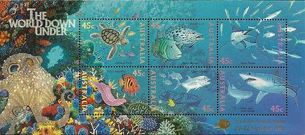 AUSTRALIA 1995 - Brisbane - Hypselodoris