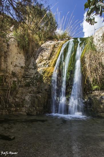 The Nahal David Stream