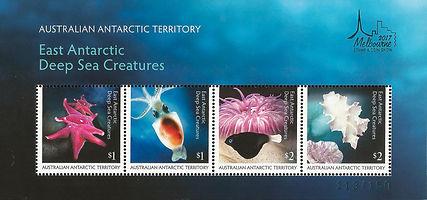 Australia AAT Deep Sea Creatures MS Melb